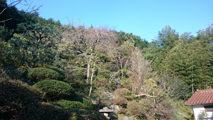 島根県大田市温泉津町今日の天気は快晴