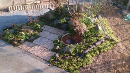 畑の杜「木々に囲まれた自然な庭空間」仕上がり