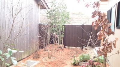 大澤の杜「四季を感じられる庭空間」大澤邸 扉隠し完成