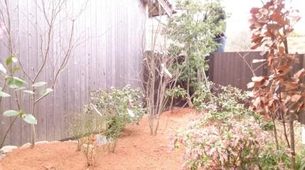 大澤の杜「四季を感じられる庭空間」木々植栽