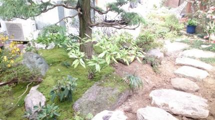 内藤邸「落ち着きと奥行きのある庭空間」 飛び石