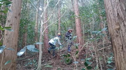 雑木林探検隊