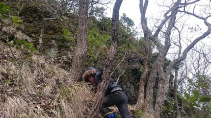 木々の幹を上手に持ちながらのり面を登る