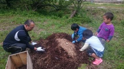 土肥さん家族とカブトムシの幼虫の採取