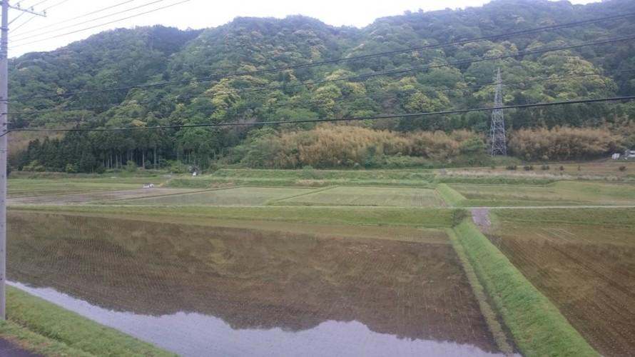 山々の新緑と田植え