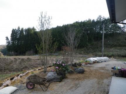 岩根の杜「心落ち着く庭空間」植栽開始