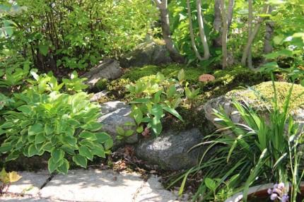 木漏畑の杜「木々に囲まれた自然な庭空間」木漏れ日